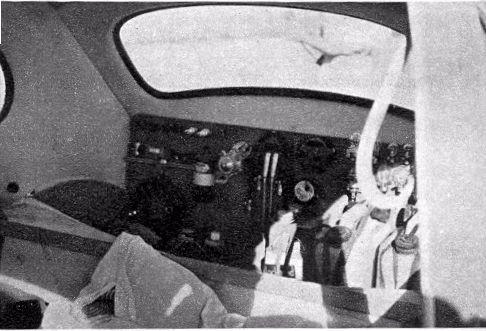 61safari.jpg